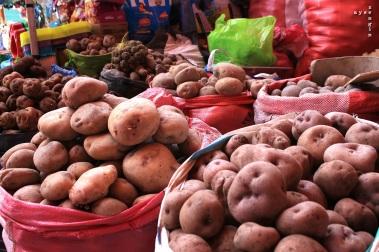 40 types of potatoes!
